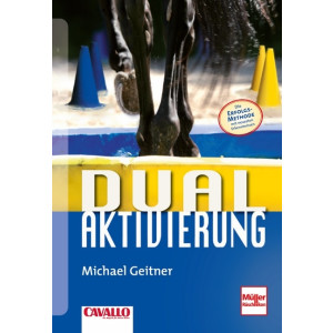 Dual Aktivierung (Michael Geitner)