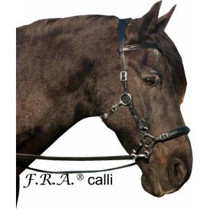 F.R.A. Calli inkl. Hackamore
