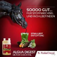 PaskaCheval Algua Digest 1l zur Leberentgiftung